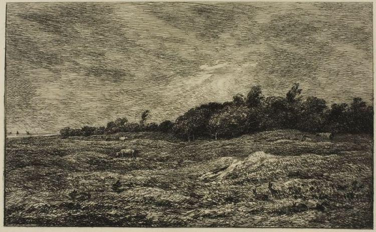 The Meadow Graves Villerville (Calvados), öl von Charles François Daubigny (1817-1878, France)