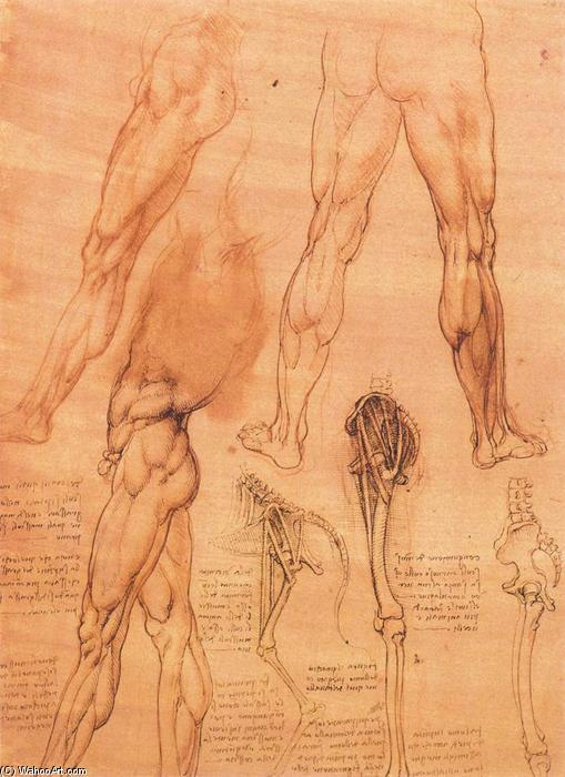 Bestellen Malerei Kopie Studien Ber Beine Des Menschen Und Der