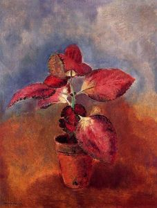 Odilon Redon - Begonia in Pot