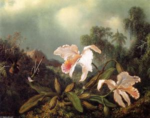 Martin Johnson Heade - Jungle Orchideen und Kolibris