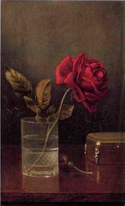 Martin Johnson Heade - der königin der rosen