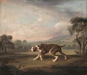 George Stubbs - Spanisch Pointer