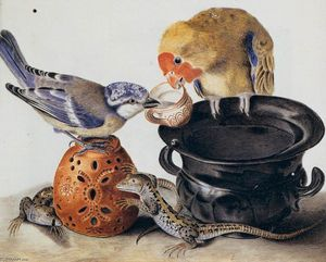 Luisa Vitelli - Parrot, Blaumeise, Two Lizards und Vasen