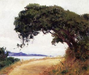 Guy Orlando Rose - point lobos , eiche
