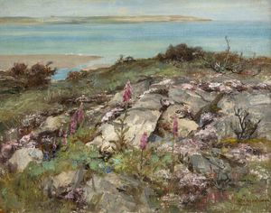 William Stewart Macgeorge - Foxgloves And Sea Pinks