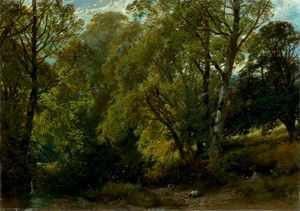 James Duffield Harding - Ein schattig  Ecke