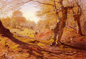 Andrew Maccallum - Seasons_In_The_Wood Frühling
