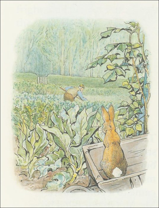 Peter Rabbit 26a - (11x13) von Beatrix Potter (1866-1943)