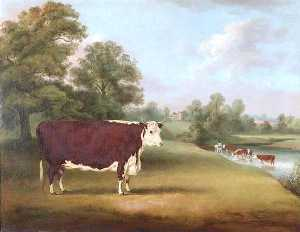William Henry Davis - Hereford Kuh nahe Cronkhill Bauernhof