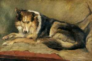 William Henry Charlton - Collie Hund