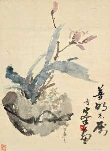 Gao Qifeng - orchidee