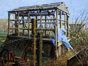 Gary Sargeant - Küche lane allotments , Beverley , east riding von yorkshire ( 2 )